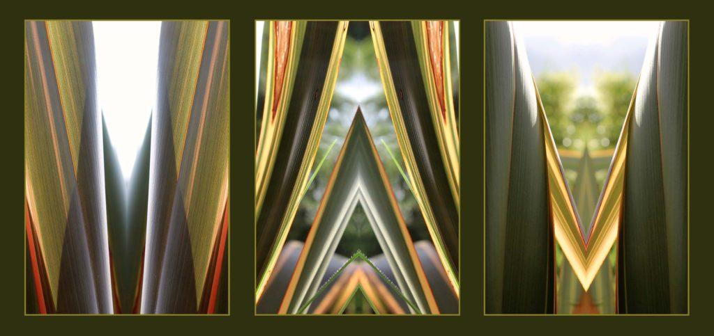 artandhealing-harakeke-rackcard-robertvandertouw-