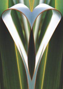 Art & Soul NZ A4 Print Front Heart - 28-07-16 PRINT